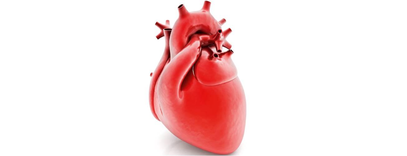 O coração no centro das metas mundiais de saúde