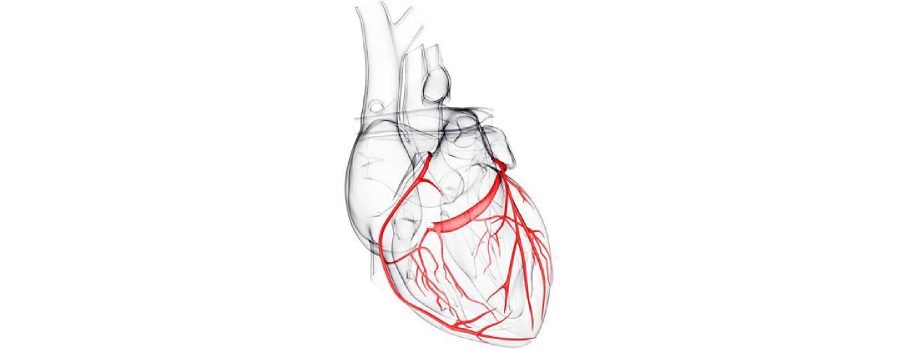 Sutilezas letais: os sintomas menos conhecidos do infarto