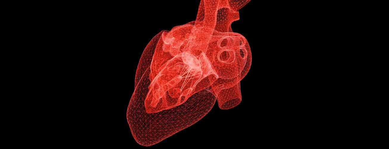 O novo guia de recomendações para prevenir doenças do coração